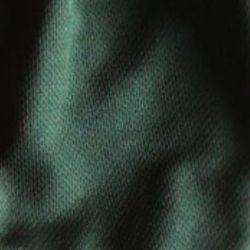 Cesuver Short Verde
