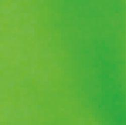 Verde Clase