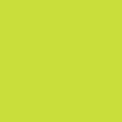 Amarillo Neon Lisa